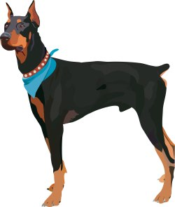 Doberman Pinscher Dog clip art