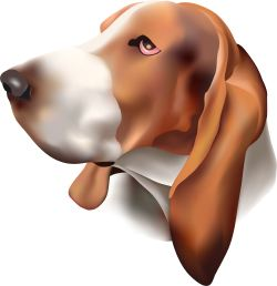 Brown and White Dog clip art